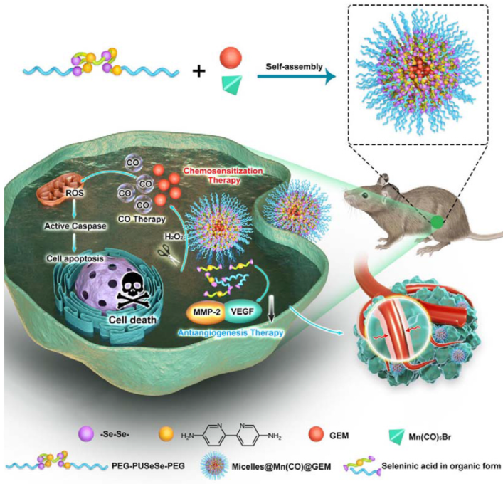 YJC Biomaterials