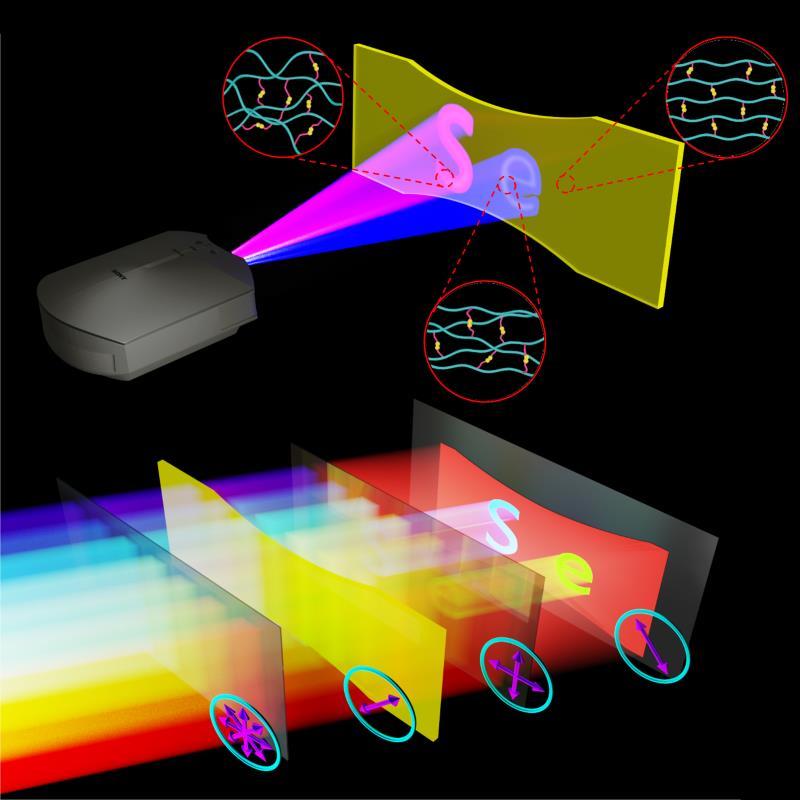 Liu C Advanced Materials 2020